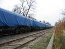 2003-11-01.5787.Guelph.jpg