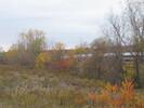 2003-11-01.5952.Aldershot.jpg