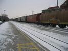 2004-01-11.6611.Guelph.jpg