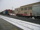 2004-01-11.6627.Guelph.jpg