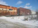 2004-01-18.6788.Puslinch.jpg