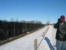 2004-01-24.7078.Ingersoll.jpg