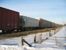 2004-02-28.7470.Puslinch.jpg
