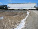 2004-03-22.8717.Puslinch.jpg