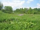 2004-06-05.2803.Flamborough.jpg