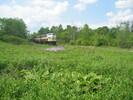 2004-06-05.2805.Flamborough.jpg