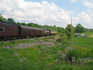 2004-06-05.2809.Flamborough.jpg