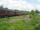 2004-06-05.2811.Flamborough.jpg