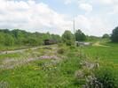 2004-06-05.2815.Flamborough.jpg