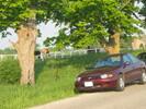 2004-06-05.2957.Moffat.jpg