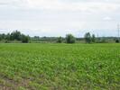 2004-06-28.3535.Coteau.jpg