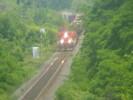 2004-06-30.4013.Newtonville.jpg