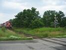 2004-07-17.5497.Zorra.jpg
