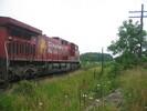 2004-07-17.5503.Zorra.jpg