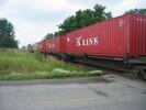 2004-07-17.5512.Zorra.jpg