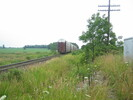 2004-07-17.5538.Zorra.jpg