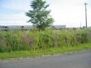 2004-07-25.6032.Belleville.jpg
