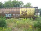 2004-08-30.7633.Guelph.jpg