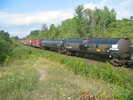 2004-08-30.7700.Scotch_Block.jpg