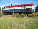 2004-10-01.0089.Guelph.jpg