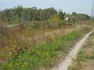 2004-10-01.0107.Guelph.jpg