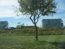 2004-10-01.0179.Guelph.jpg