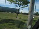 2004-10-01.0181.Guelph.jpg