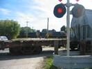 2004-10-01.0263.Guelph.jpg