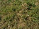 2004-10-01.0285.Guelph.jpg