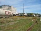 2004-10-01.0437.Guelph.jpg