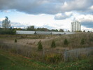2004-10-09.0839.Guelph.jpg