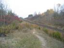 2004-10-27.1273.Scotch_Block.jpg