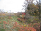 2004-10-28.1522.Milton.jpg