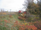 2004-10-28.1523.Milton.jpg