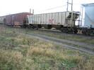 2004-11-25.2975.Zorra.jpg