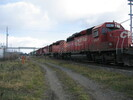 2004-11-25.2991.Zorra.jpg
