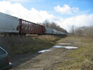 2004-11-25.3005.Zorra.jpg