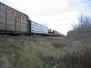 2004-11-25.3022.Ingersoll.jpg