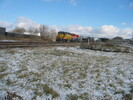 2004-12-03.3754.Guelph.jpg