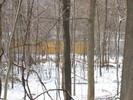 2004-12-22.4604.Deerfield.jpg