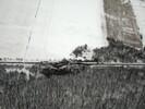 2005-01-29.1243.Aerial_Shots.jpg