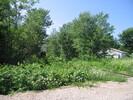 2005-07-24.9386.Gatineau.jpg