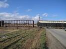 2005-11-19.5367.Ayr.jpg