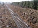2006-01-12.2033.Guelph.avi.jpg