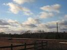 2006-01-14.2632.Killean.avi.jpg