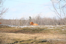 2006-01-21.3045.Killean.jpg