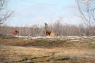 2006-01-21.3046.Killean.jpg