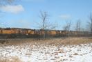 2006-03-03.5924.Puslinch.jpg