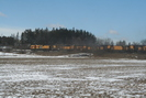2006-03-03.5967.Puslinch.jpg