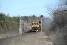 2006-03-03.5981.Puslinch.jpg